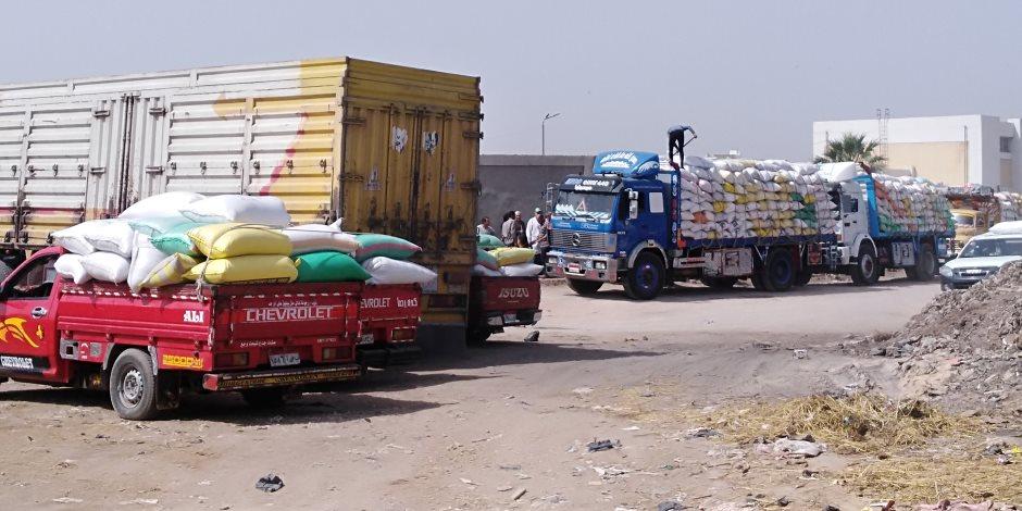 انتهاء موسم شراء القمح المحلي.. لهذه الأسباب تستورد مصر 6 ملايين طن في 2018