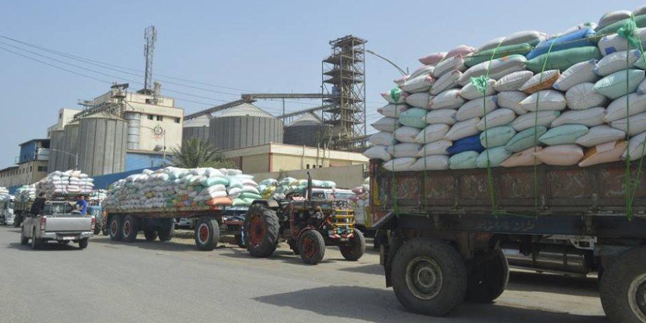 25 منفذاً بكفر الشيخ يستقبل 46486 طناً و 434 كيلو من القمح