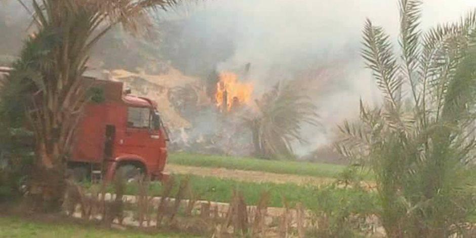 حريق هائل يلتهم 7 رؤوس ماشية فى حظيرتين بالمنوفية