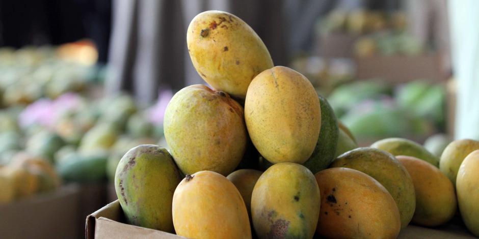 لعشاق المانجو .. فاكهة الصيف اللذيذة تحمى من سرطان القولون