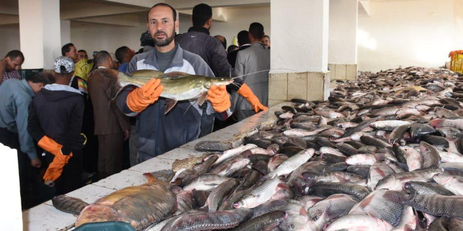 ننشر أسعار السمك اليوم السبت 5-10-2019.. البلطي يرتفع وسجل 30 جنيها للكيلو