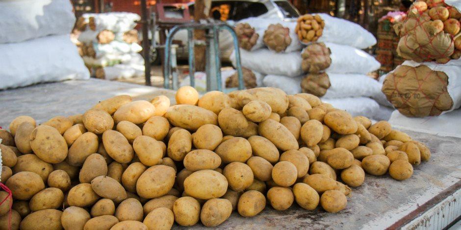 بعد أزمة البطاطس.. حبس المنتجات الاستراتيجية ينتظر تطبيق قانون حماية المستهلك