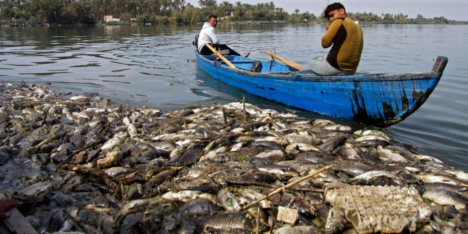مع اقتراب عيد الفطر ..  استقرار أسعار الأسماك وتوقعات بارتفاع الطلب عليه