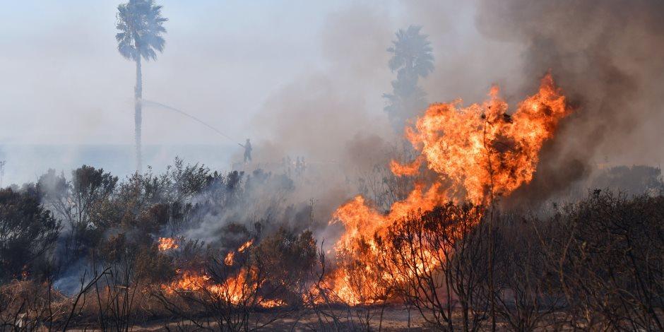 الحر يجتاح أوروبا: فرنسا تسجل أعلى درجة في تاريخها.. وحرائق الغابات تضرب كتالونيا