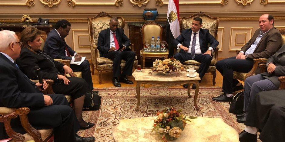 فروع للجامعات المصرية ومعهد أزهري.. تعرف على مطالب سفير جيبوتي من البرلمان المصري (صور)