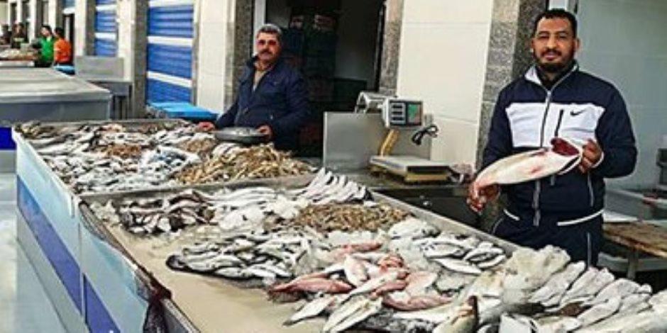 ثورة في الإنتاج السمكي.. تفاصيل تشغيل أكبر سوق للأسماك في الشرق الأوسط ببورسعيد