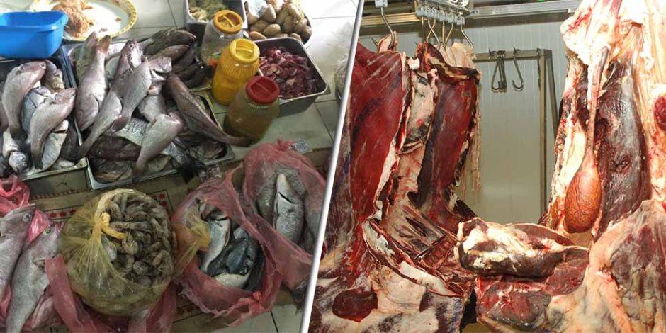 الحكومة تحمي غذاء المصريين: حملات «بيطرية وتموينية» تداهم الأسواق