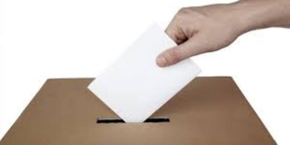 الوطنية للانتخابات : إعلان نتائج الاستفتاء فى موعد أقصاه 27 أبريل