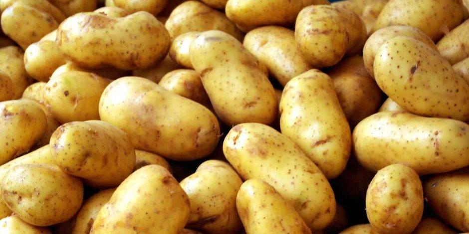 أسعار الخضروات والفاكهة اليوم الجمعة 14-2-2020.. البطاطس بـ 2 جنيه للكيلو