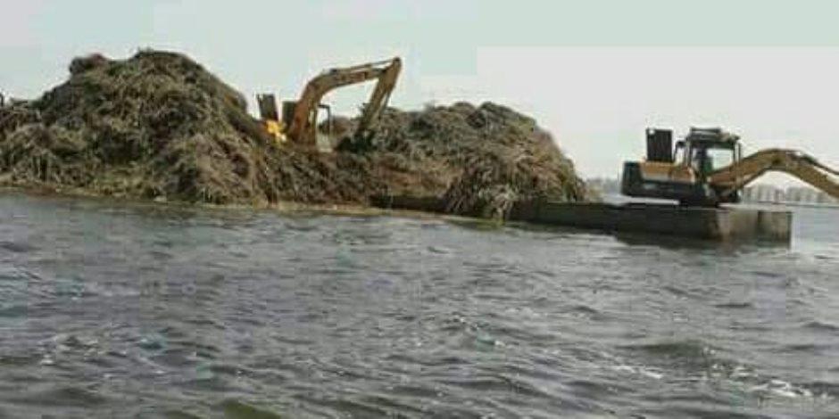 بعد إهمالها من الحكومات السابقة.. «الزراعة» تضرب بيدٍ من حديد لتطهير البحيرات الشمالية