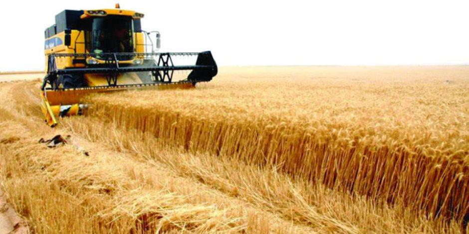5 شركات كبرى للبذور والتقاوي تستعبد مزارعي العالم