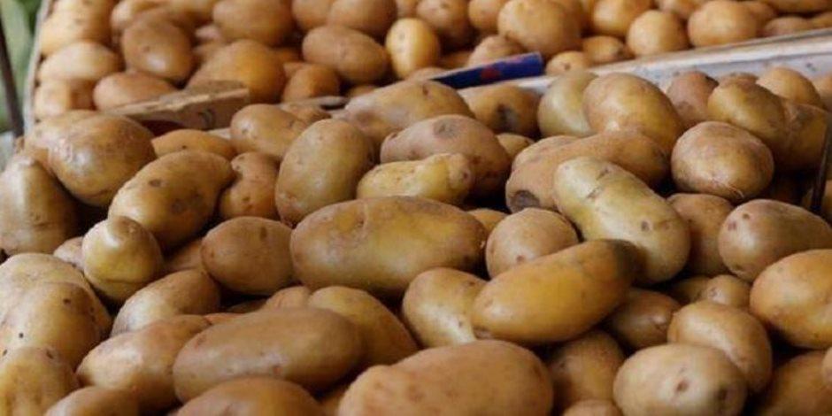 تعرف على سبب ارتفاع أسعار البطاطس في السوق المصري.. الكيلو يصل لـ 7 جنيهات