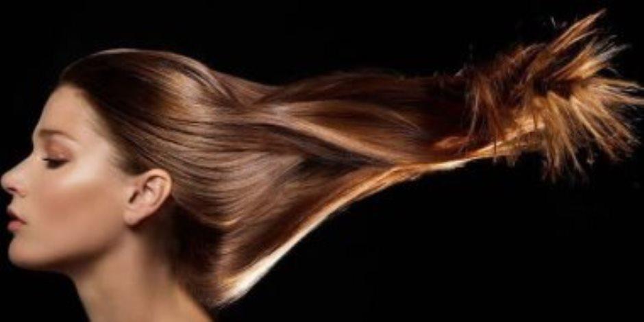 الحقى شعرك لو قصف.. الأفوكادو وجوز الهند لتطويل الشعر التالف