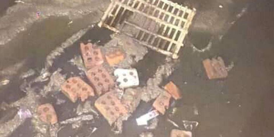 أنقذوا «المعاشات» في المنوفية.. عزبة باشت بمياه الصرف (صور)