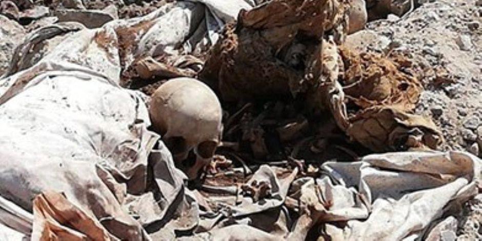 حقيقة التهام الكلاب لرفات الموتى بمقابر عين الحياة (صور)