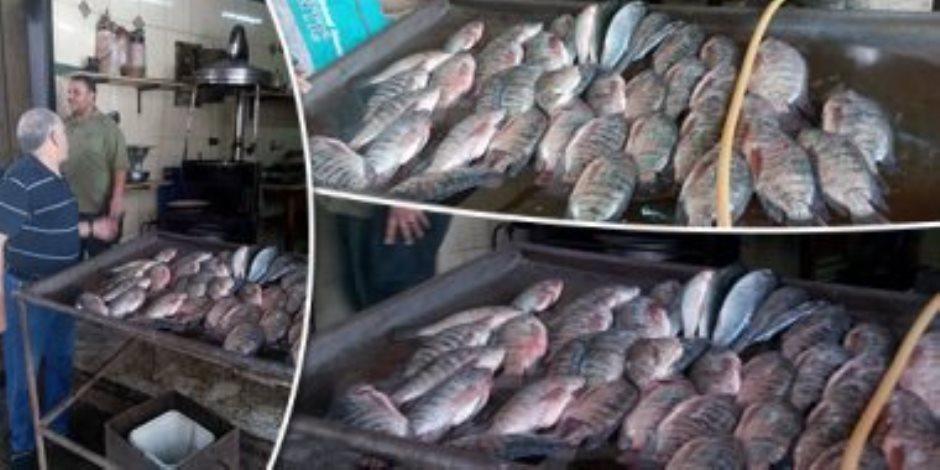 أسعار السمك اليوم الأحد 22-3-2020.. الفليه يبدأ من 30 جنيها للكيلو