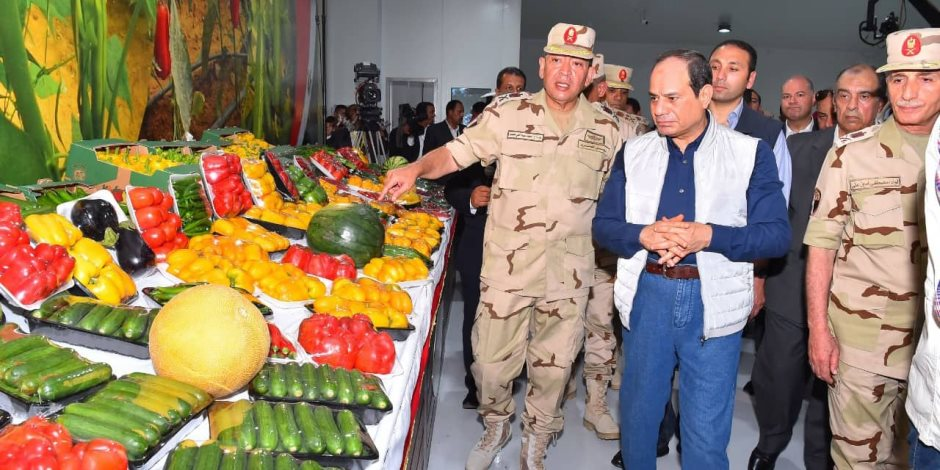 صِمام للأمن الغذائى.... المشروعات القومية تُعوّض الفاقد من الأراضى الزراعية وتوفر فرص العمل