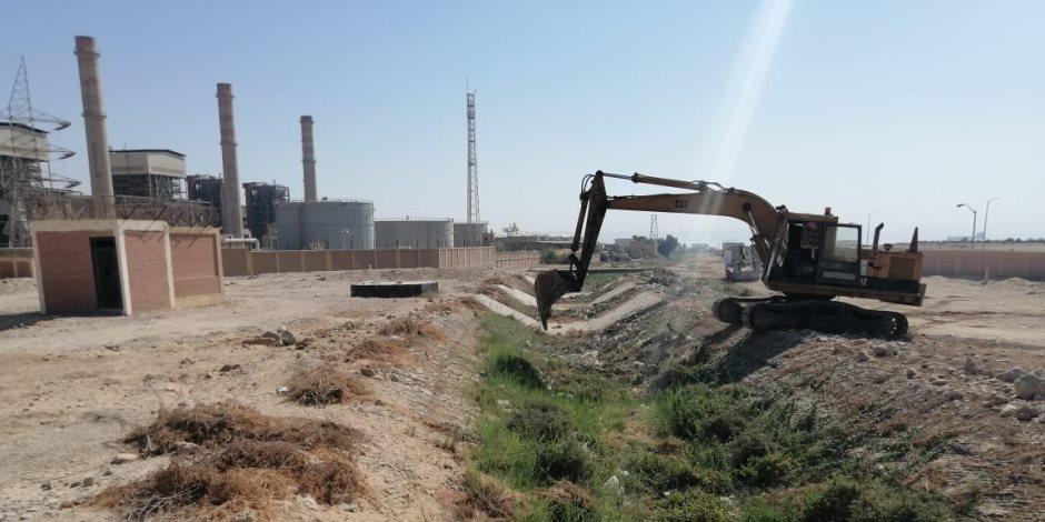 شمال سيناء تستخدم مياه الأمطار في زراعة القمح والشعير والأعشاب الطبية