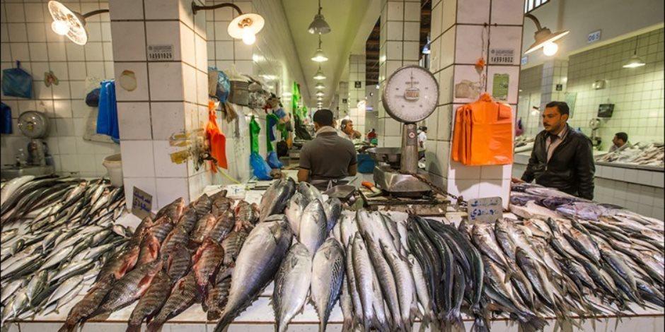 أسعار السمك اليوم الخميس 27-2-2020.. البوري يبدأ من 40 جنيها للكيلو