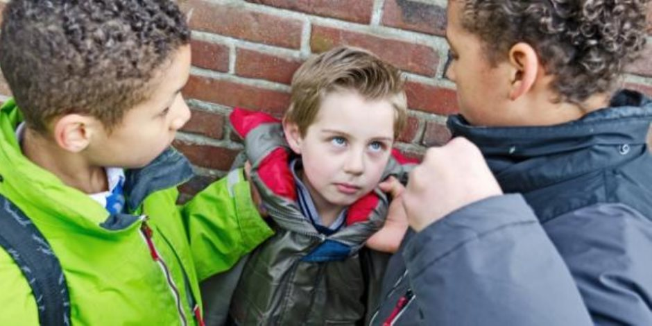برلماني: الانحدار الثقافي والأخلاقي السبب وراء انتشار ظاهرة العنف في المدارس