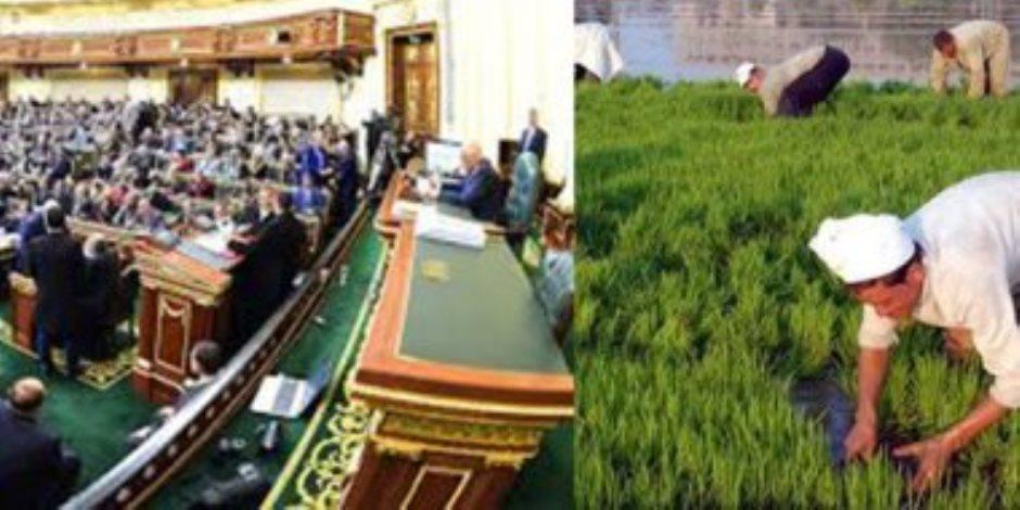 «زراعة البرلمان» تدعم الاستثمار الزراعي والفلاح في مواجهة كورونا (التفاصيل)