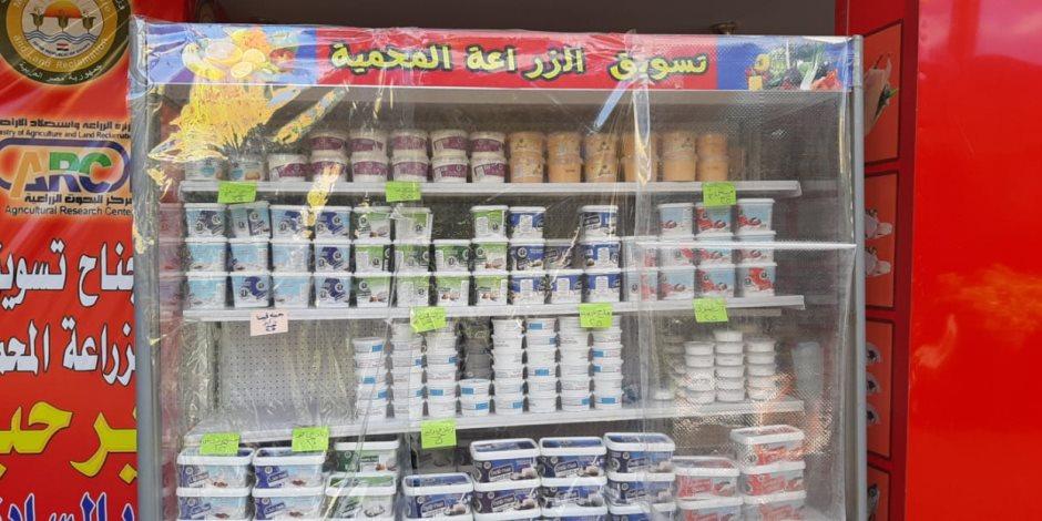 التخفيضات تصل لـ25%.. منافذ وزارة الزراعة تفتح أبوابها أمام المواطنين (صور)