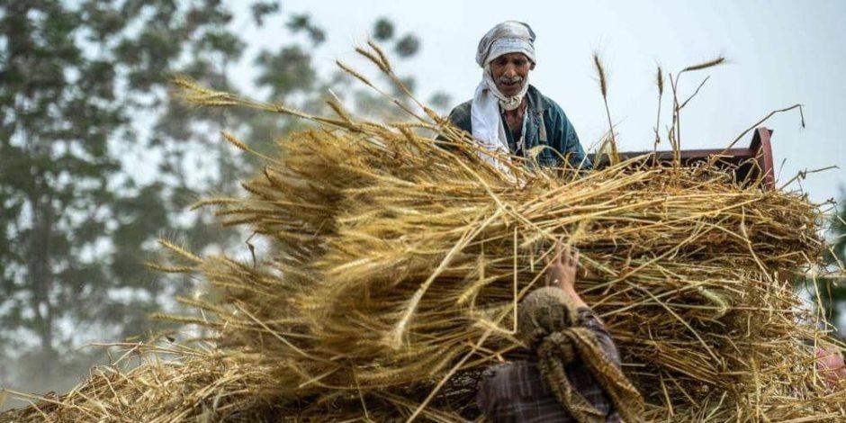 مصر تبحث إنشاء مخازن عملاقة للسلع الأساسية