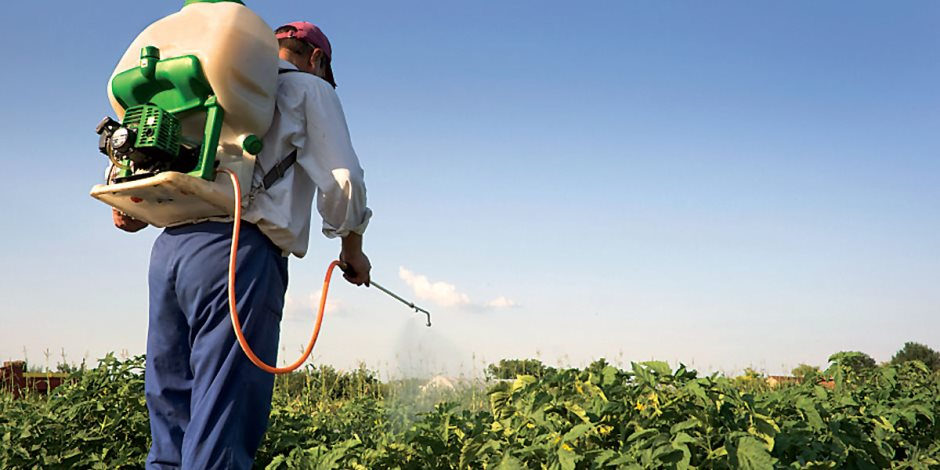 لمزارعى الصيف.. تعرف على نصائح الزراعة للاستخدام الآمن للمبيدات