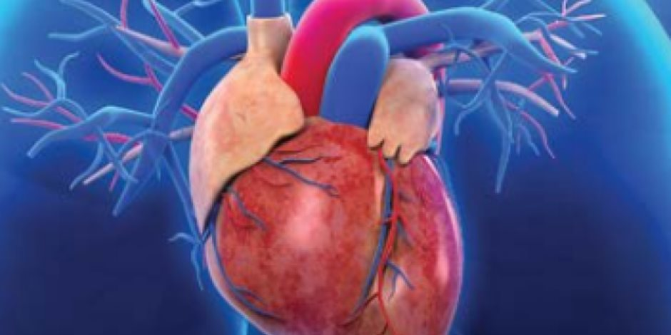 روشتة الحفاظ على صحة القلب.. أبرزها الإقلاع عن التدخين