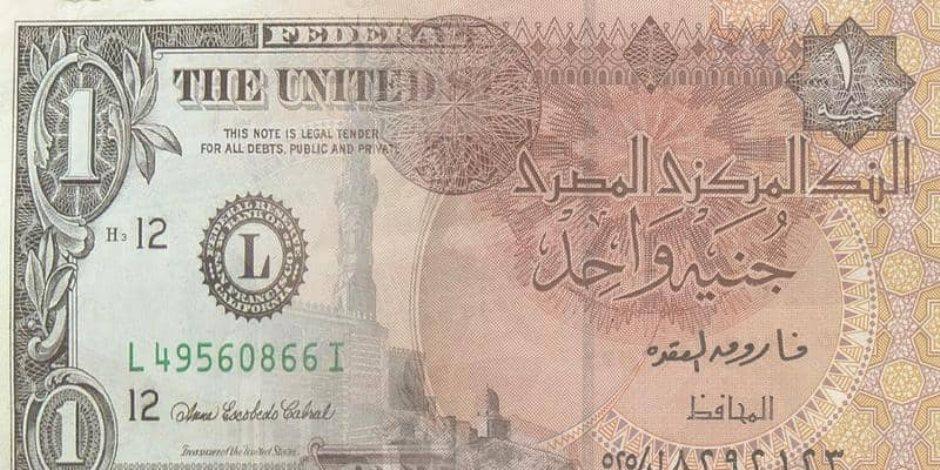 قرار جرئ انقذ مصر.. رحلة صعود الجنية في 4 أعوام بعد تحرير سعر الصرف