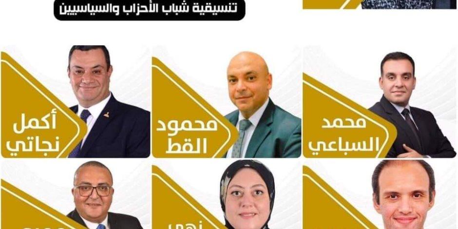 شباب «تنسيقية الأحزاب» يحصدون مقاعد اللجان النوعية بمجلس الشيوخ