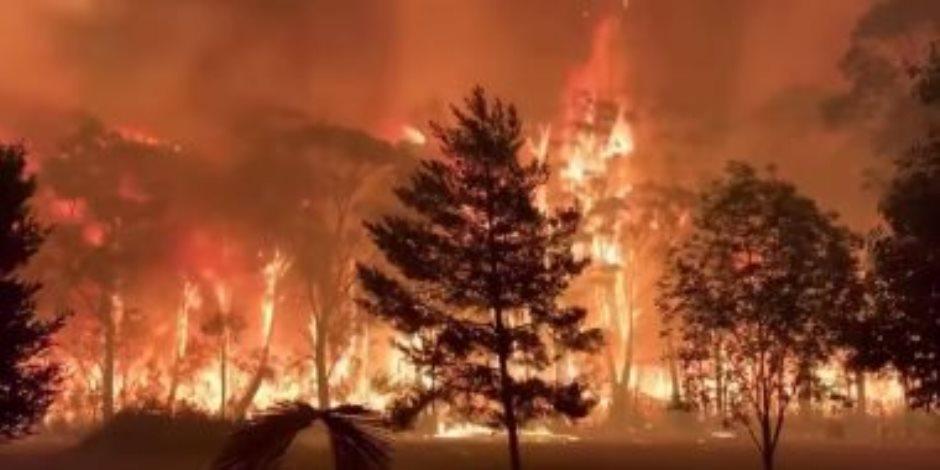 الجزائر تعلن إخماد كل الحرائق المشتعلة فى ولاية تيزى وزو الجزائرية