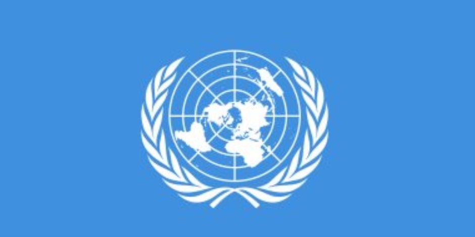 برنامج الأمم المتحدة الإنمائى يشيد بخطة مصر لإصلاح دعم الطاقة ويصفها بالجريئة