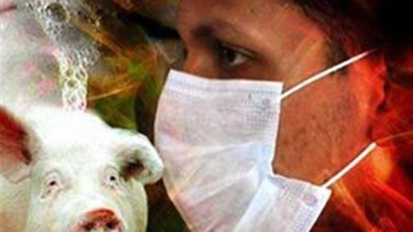 «انفلونزا الخنازير» تكشر عن أنيابها..الفيرس يضرب المحافظات..الموت يحاصر «بدو سيناء» ويهدد صحة الغلابة فى «الدلتا».. وينهش أجساد الفلاحين فى «الصعيد»