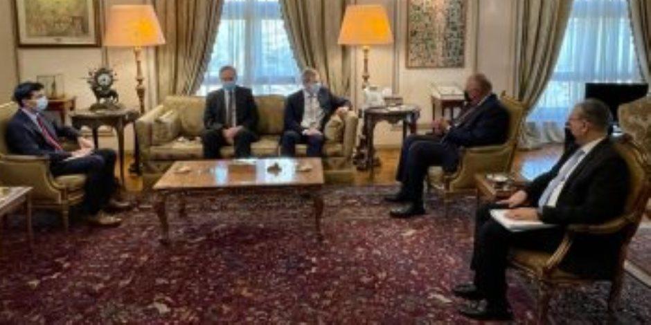 وزير الخارجية: مصر تواصل جهودها لتثبيت وقف إطلاق النار فى قطاع غزة