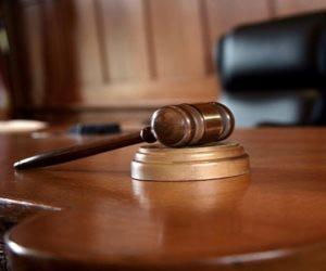 «الجنايات» تستمع غدا لشهود النفي في محاكمة 16 متهما بـ«فض اعتصام النهضة»