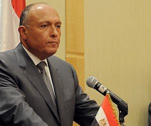 إنذار لوزير الخارجية يطالب بعدم تسليم جواز السفر الدبلوماسي للبرادعي