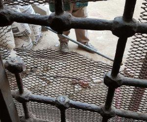 إخلاء سبيل 3 أفراد شرطة  في واقعة هروب أحد المتهمين بالسطو على فيلا مجدي حتاتة
