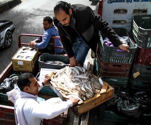 استقرار أسعار السمك اليوم الأربعاء 11-9-2019 بسوق الجملة