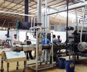 من التدريب للتشغيل.. قصة نجاح 40 ألف طالب فني ينضموا سنويا لسوق العمل بالمصانع