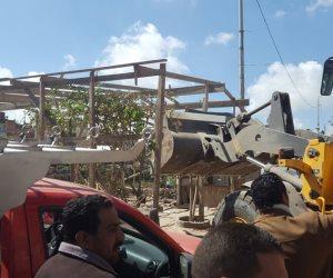 الري: استمرار حملات إزالة التعديات على نهر النيل ومنافع الري