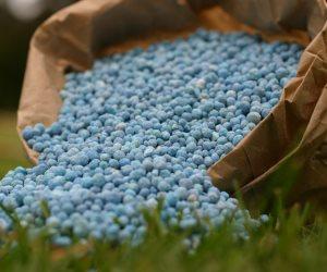 وزارة الزراعة تمنع تصدير الأسمدة للخارج