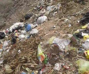 الشبكشي يدخل عش الدبابير في العجوزة... و«عبد الجواد» شاهد صامت أمام أكوام القمامة بالهرم