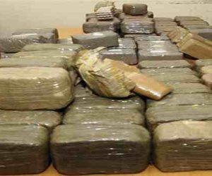 خاص.. وكيل الإدارة العامة لمكافحة المخدرات: المصريون ينفقون 5 مليارات جنيه على الكيف