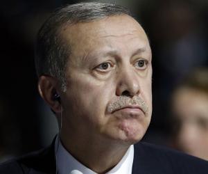 زعيم عصابة.. أردوغان يحمى الشركات المتورطة بتهريب السلاح لليبيا