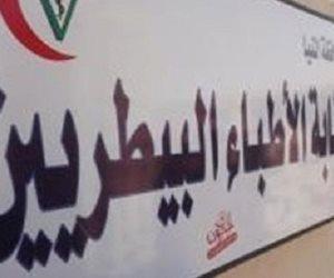«البيطريين»: بحث وضع مسودة قانون مزاولة المهنة بعد إجازة العيد