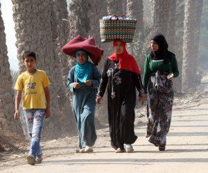 64.67 مليون دولار جملة دعم «الوكالة الأمريكية» للتنمية الريفية وزيادة الدخول في مصر