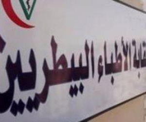 """فوز """"عفيفي والبوشي وسلام """"في انتخابات التجديد النصفي لنقابة البيطريين"""