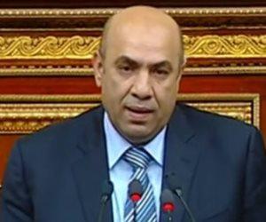 برلماني: زيارة الرئيس للسعودية تؤكد أن العلاقات بين البلدين أكبر من مواقف اختلاف وجهات النظر