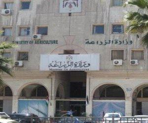 الزراعة تنفذ برنامجا تدريبيا لشباب الجامعات لتشجيع زراعة أشجار المانجروف
